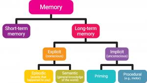 Types of Memory: Sensory Memory, Short-term Memory (STM ...