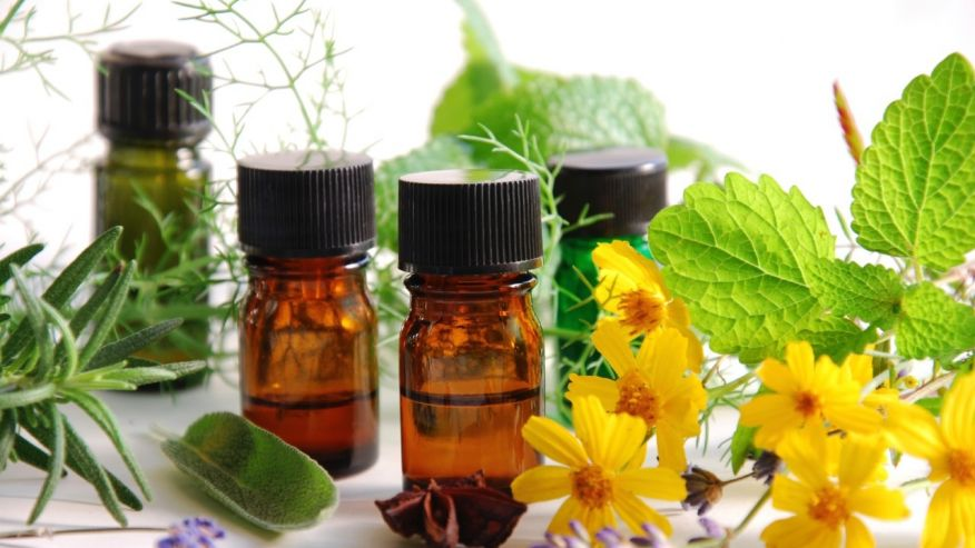 Your Guide to Essential Oils – Intro To Essential Oils ...