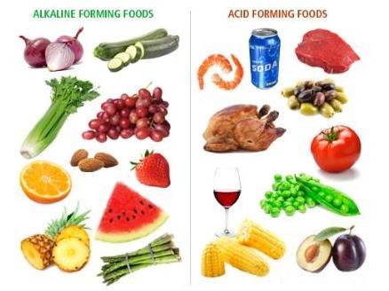 List Of Bases And Acids Food