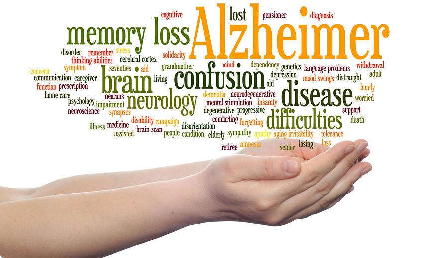 Image result for alzheimer disease