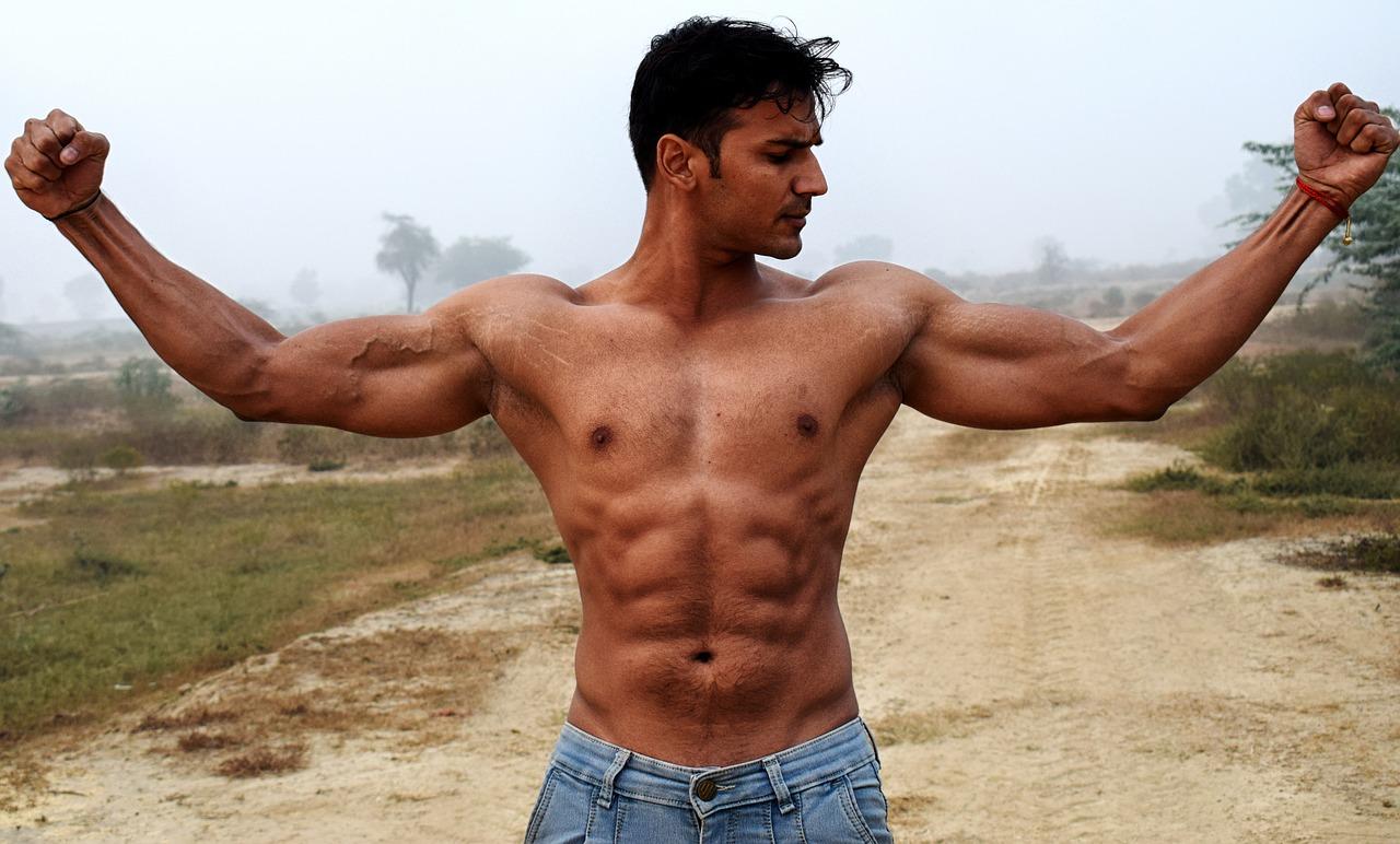 Bodybuilding weight loss programs